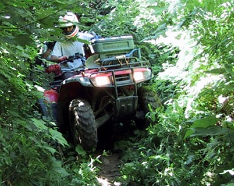 Off Roading In Clay County